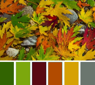 Nature Color Palette